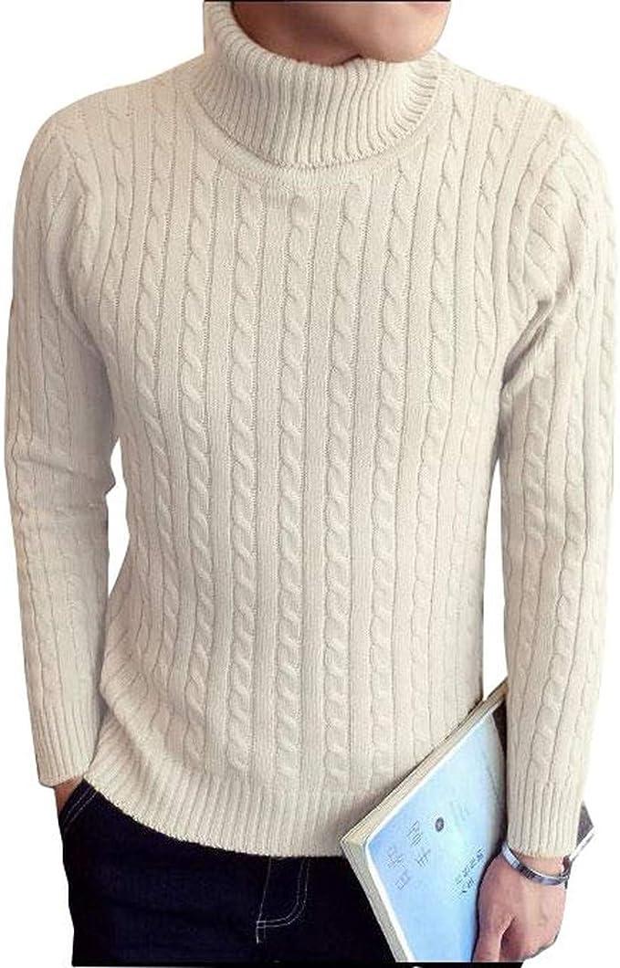 [ベンケ] セーター メンズ タートルネック 無地 カジュアル 長袖 ニット ケーブル編み M~2XL