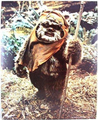 1983 Star Wars ROTJ Fan Club WICKET 8x10 Photo Vintage ()