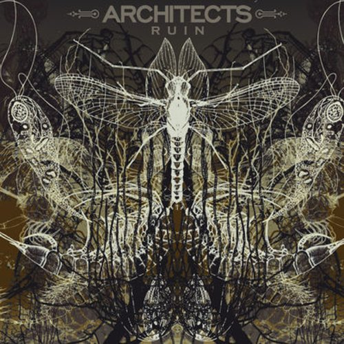 personal architect - 8