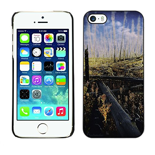 Hülle Case Schutzhülle Cover Premium Case // F00002392 Herbst // Apple iPhone 5 5S 5G