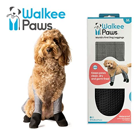 Walkee Paws - Leggings Impermeables para Perro, Mantienen ...