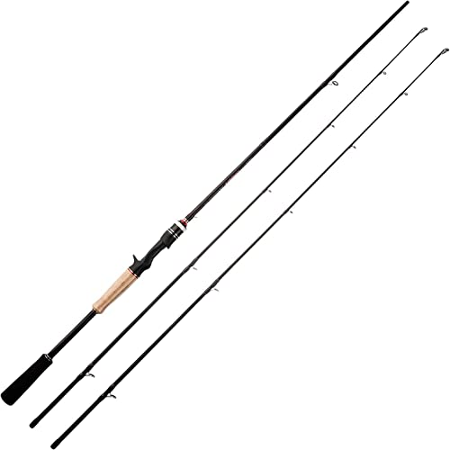 BnM Silver Cat Catfish Series Rod Spinning