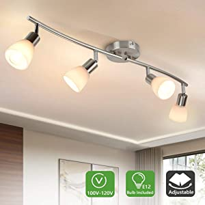 DLLT 4-Light Track Lighting Fixtures-Adjustable Directional Spotlight Ceiling, Modern Flush Mount Wall Lights with Glass Shade for Kitchen, Living Room, Hallway, Brushed Nickel, E12(Bulb Included)