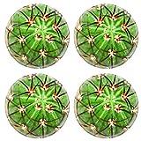 Luxlady Natural Rubber Round Coasters IMAGE ID: 24171703 Cactus Melocactus diersianus