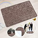 Indoor Doormat Super Absorbs Mud Absorbent Rubber Backing Non Slip Door Mat for Front Door Inside Floor Dirt Trapper Mats Cotton Entrance Rug, 20'x 31.5' Shoes Scraper Machine Washable Carpet (Coffee)