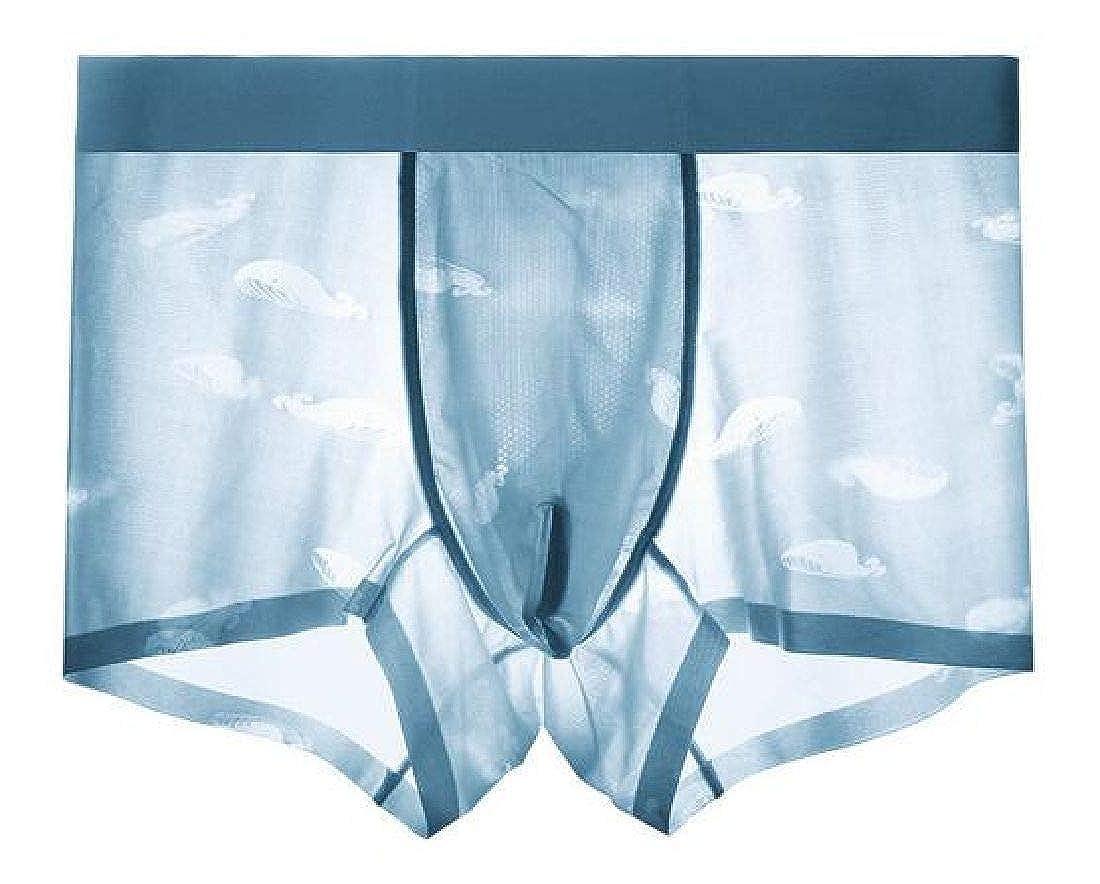 Abeaicoc Men Ice Silk Breathable Quick Dry Comfort Underpants Boxer Brief