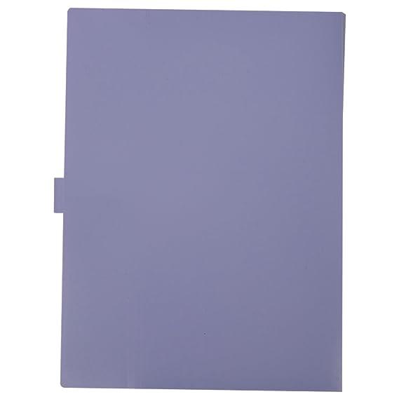 Amazon.com : SODIAL(R) Kawaii FoldersStationery Carpeta File Folder 5layers Archivadores Rings A4 Document Bag Office Carpetas£¨Purple£ : Office Products