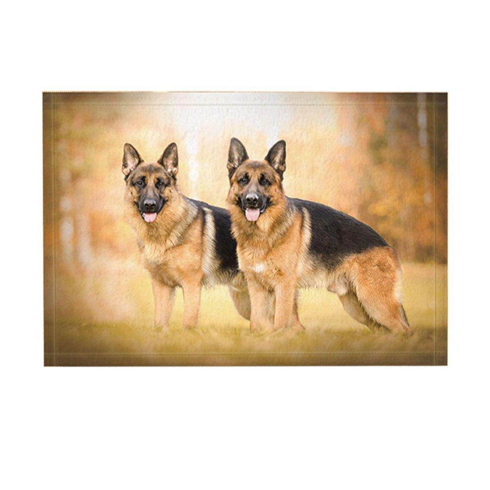 NYMB Animal Bath Rugs By Two German Shepherd Dog On FieldNon-Slip Doormat Floor Entryways Indoor Front Door Mat, Kids Bath Mat, 15.7x23.6in, Bathroom Accessories by NYMB
