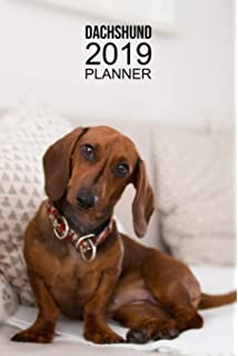 2019-2020 Monthly Pocket Planner: Two-Year Calendar ...