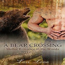 A Bear Crossing