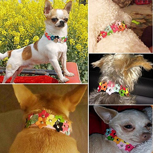 free shipping Beirui Christmas Cute PU Leather Dog Collar with Adorable Flowers