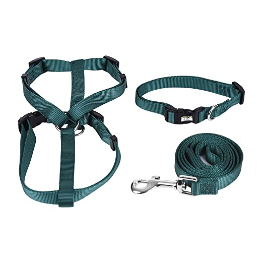 fesjoy Collar Leash Set 3 unids/Set Collar de Perro y arnés y ...
