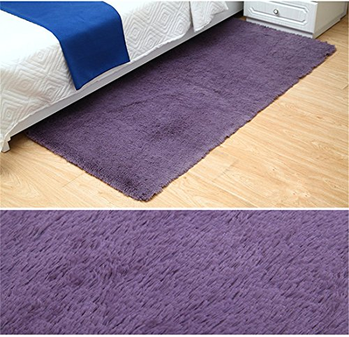Sytian 23.62x47.24 Inch Ultra Soft 4.5cm Thick Indoor Morden