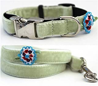"product image for Diva-Dog 'Dori Velvet' Custom Small Dog 5/8"" Wide Dog Collar with Plain or Engraved Buckle, Matching Leash Available - Teacup, XS/S"