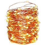 XINSTAR Fairy String Lights, Battery Operated, 8 Modes Twinkling 50 LED Fairy Lights 16.4FT Copper Wire Firefly Lights Remote Control for Bedroom Wedding Festival Decor (3 lines&Warm White)