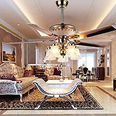 RainierLight Modern Ceiling Fan Remote Control 5 Reversible Blades 5 Frosted Glass Cover for Indoor/Bedroom/Living Room LED Fan Chandelier Mute Fan 52 Inch