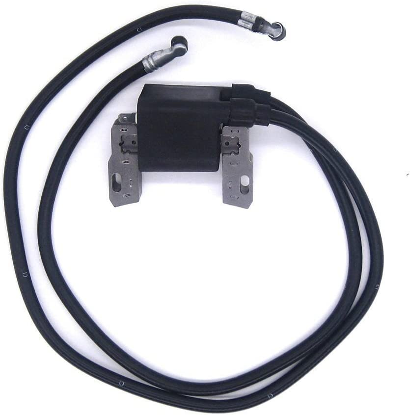 Lisongin Ignition Coil for Briggs & Stratton 42A707 42A777 422707 394891 392329 590781 -P#EWT43 65234R3FA720834