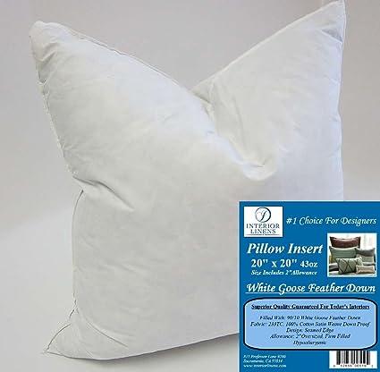 Amazon 40 X 40 40oz Pillow Insert 4040 White Goose Feather Unique 10 X 20 Pillow Insert