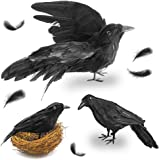 FUTUREPLUSX Black Crows Halloween, 3PCS Fake Crow with Bird's Nest Handmade Artificial Crow Crow Decoys Fake Raven…