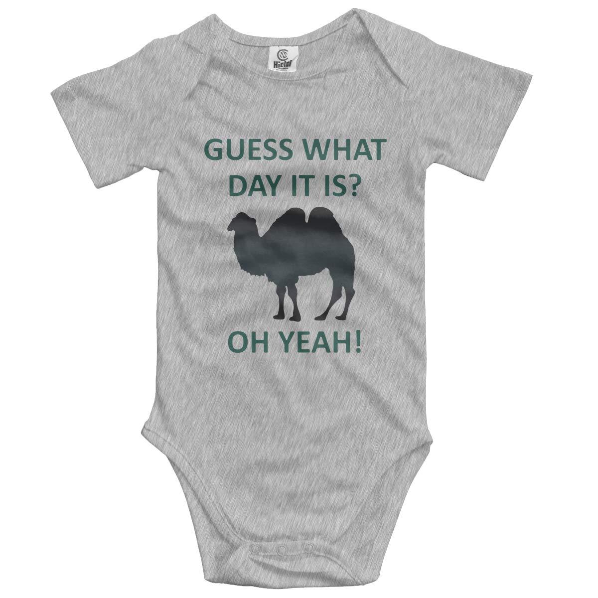 OLPAE Funny Camel Newborn Baby Short Sleeve Onesies Cute Onesies for 0-24 Months Baby