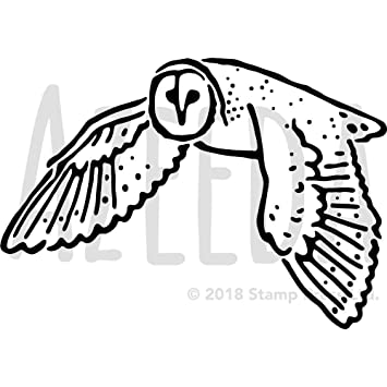 Large A2 \'Barn Owl\' Wall Stencil / Template (WS00029637): Amazon.co ...