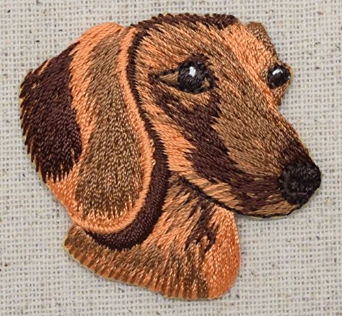 - Pets - Doxie - Iron on Embroidered Patch Applique ()
