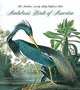 Audubon's Birds Of America (Tiny Folio)