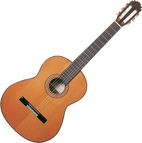 Funda de la guitarra de Manuel Rodriguez Pro entre los que se ...