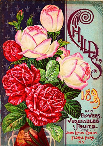 (A SLICE IN TIME 1899 Child's Rose Vintage Flowers Seed Packet Catalogue Advertisement Poster)