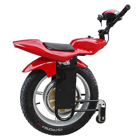 XYOUTDOOR Moto eléctrica de una Sola Rueda 1000W 20 Pulgadas ...