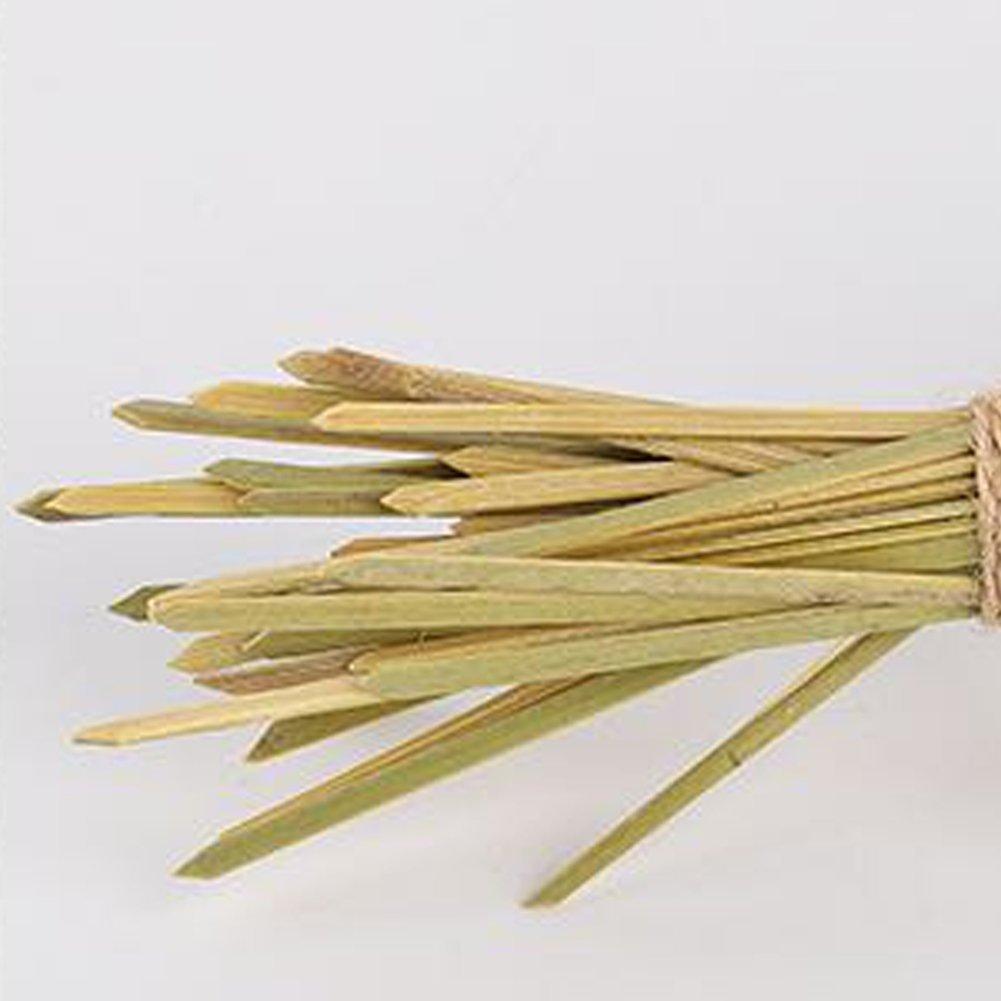 Set di 100 spiedi in bamb/ù con parete superiore annodata ideali per cocktail e aperitivi accessori per feste 9cm//3.54 Green lunghezza circa 10 cm 12 cm 15 cm