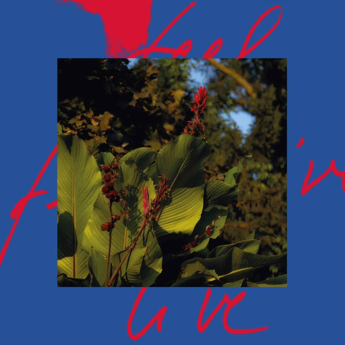 Vinilo : Massimiliano Pagliara - Feel Live (2 Pack)
