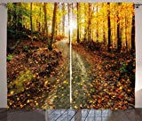 Ambesonne Fall Decor Curtains, Inspirational Early Morning View in Woods Rising Sun Idyllic Park Wilderness, Living Room Bedroom Window Drapes 2 Panel Set, 108 W X 84 L Inches, Multicolor Review