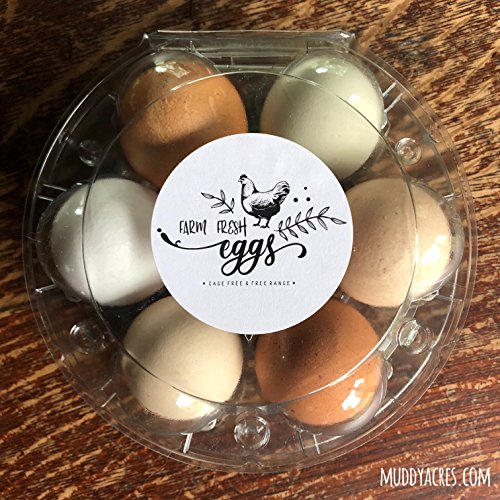 Hen Sticker - Farm Fresh Eggs Stickers, Cage Free, Free Range, Egg Carton Stickers, Egg Carton Labels, Homesteading, Farmer's Market Packaging, Hen