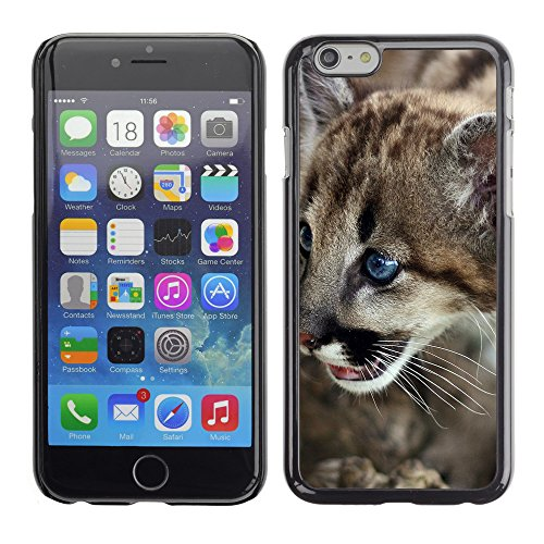 """Premio Sottile Slim Cassa Custodia Case Cover Shell // V00003195 cub cougar mignon // Apple iPhone 6 6S 6G PLUS 5.5"""""""