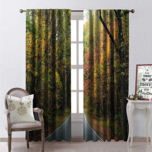 Appalachian Trail Window Curtain Fabric Outdoor Scene Photo of Early Autumn Trees Along The Skyline Drive Way Drapes for Living Room W96 x L84 Multicolor ()
