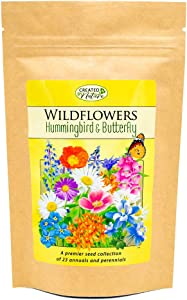 Hummingbird & Butterfly Wildflower Seed Mix - Over 60,000 Seeds - by 'createdbynature'