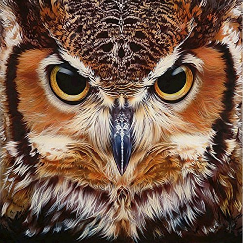 Adarl 5D DIY Full Diamond Painting Rhinestone Pictures of Crystals Embroidery Kits Arts, Crafts & Sewing Cross Stitch (Owl)