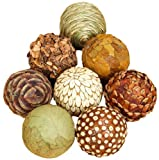 Benzara Natural Ball Bamboo Wood Balls, Set of 8