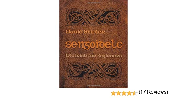Sengoidelc old irish for beginners irish studies kindle sengoidelc old irish for beginners irish studies kindle edition by david stifter reference kindle ebooks amazon fandeluxe Images