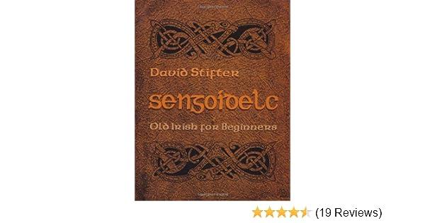 Sengoidelc old irish for beginners irish studies kindle edition sengoidelc old irish for beginners irish studies kindle edition by david stifter reference kindle ebooks amazon fandeluxe Images