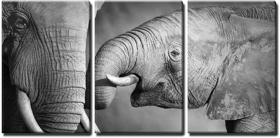 Amazon Com Wall26 3 Piece Canvas Wall Art Elephants Showing Affection Artistic Processing Modern Home Art Stretched And Framed Ready To Hang 16 X24 X3 Panels Posters Prints