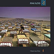 A Momentary Lapse of Reason (Vinyl)
