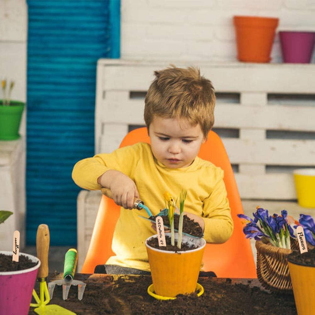 50 PCS 15 x 1.8 cm Yuccer /Étiquettes de Plantes 50 PCS Etiquette Plante en Bois avec 2 PCS Un Stylo Marqueur Etiquette Jardin pour Semences Herbes Fleurs L/égumes
