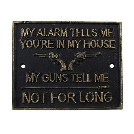 Amazon.com: TG,LLC Divertida pistola de metal señal de ...