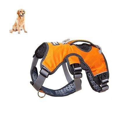 Petacc arnés para perro impermeable arnés para mascotas resistente ...