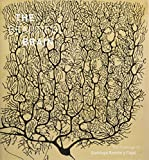img - for Beautiful Brain: The Drawings of Santiago Ramon y Cajal book / textbook / text book
