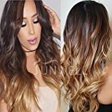 Human Hair Wigs for Black Women, Lace Front Wigs Human Hair with Baby Hair Body Wave #1B/4/27 Ombre Color 3 Tone 130% Density 18''