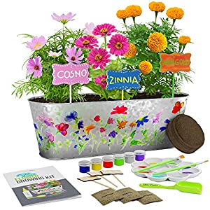 Make sure this fits by entering your model number. Paint & plant your own small garden: Paint the planter and plant markers, and sow the Marigold, Cosmos, and Zinnia flowers - with vibrant colors and pleasant scents. Follow along with the included step-by-step instructions. Make it unique: When it comes to the design, the sky is the limit! Feel free to express your creativity on the planter and plant markers.