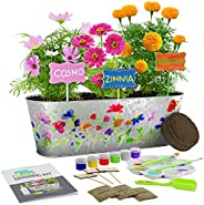 Paint & Plant Flower Growing Kit - Kids Gardening Science Gifts for Girls and Boys Ages 4 5 6 7 8 9 10 11